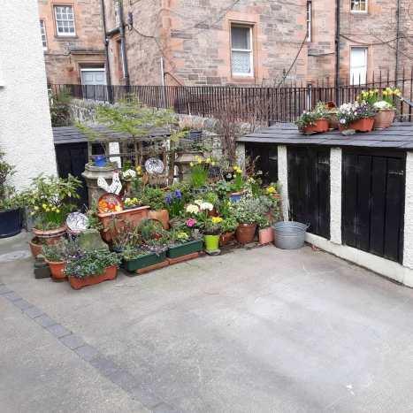A cute garden in Dean Village