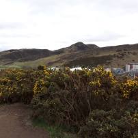 View towards Holyrood Park